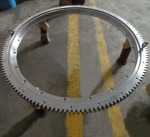 Light Series Slewing Ring Bearing with Flanges (RKS. 21 0411) pictures & photos