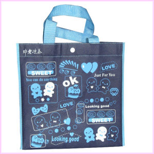 Handle Packing Recycle Shopping Laminated Non Woven Bag pictures & photos
