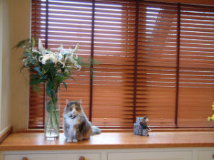 Basswood Blinds 2 Inch Window Blind pictures & photos