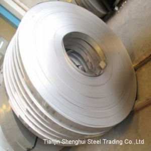 Professional Manufacturer of Stainless Steel Strips (317 Grade) pictures & photos