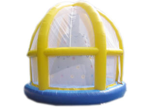 Inflatable Castle/Inflatable Combo Castle/Inflatable Products (LILYTOYS-CS-02JO)