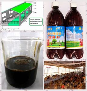 Bio Preparate for Ferment Bed Using Biological Bacterial Inoculant