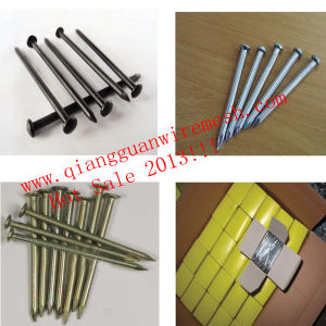 Galvanized Concrete Steel Nails / Cement Nails