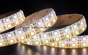 IP65 Waterproof 24V SMD5050 120 LED Strip with RoHS pictures & photos