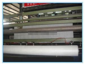 PP/PET Short Fiber/Continuous Filament Nonwoven Geotextile (100-1200g) pictures & photos