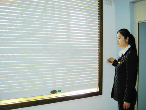 Aluminum Roller Shutter Window (SLLP32, 37, 39, 45) pictures & photos