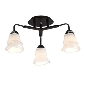 Ceiling Lamp Chandelier, Ceiling Lights Down Light (GX-8107-3) pictures & photos
