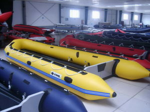 Inflatable Boat 5m/ 6m/6.5m pictures & photos
