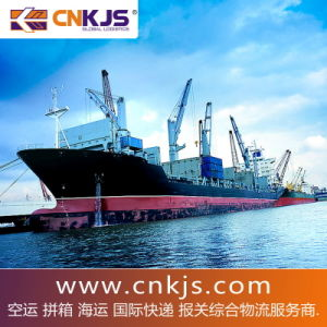 Consolidation Shpt Directly Shipping Rate USD80.00/CBM From China to Berlin/ Bielefeld/Dusseldorf/Flensburg,Germany