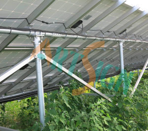 Ground Solar Mounting System for Sun Solar System pictures & photos