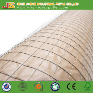Galvanized Animal Welded Wire Mesh Roll pictures & photos