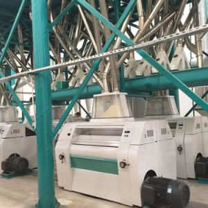 European Standard Wheat Mill Flour Making Machine Complete Plant Factory Price pictures & photos