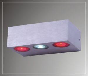 LED Wall Lamps (LED-102213)
