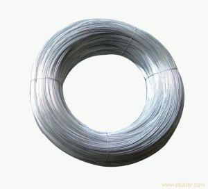Galvanized Steel Wire - 6