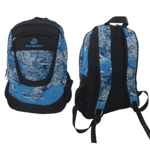 Student Outdoor Leisure Street Sports Travel School Daily Backpack Bag pictures & photos