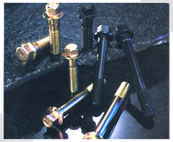 Hexagon Flange Bolts (DIN 6921) pictures & photos
