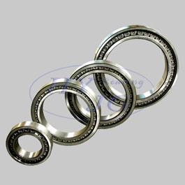 SL Series Bearings