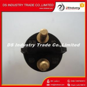 Bosch 0445120112 Common Rail Fuel Injector for Commins pictures & photos