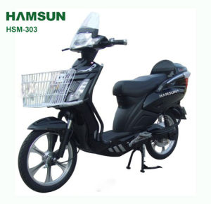 Electric Bike (HSM-303)