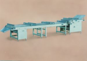 Biscuit Stacker (QNS1000/800/560) pictures & photos
