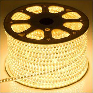 220V 60LEDs 18-22lm/LED High Brightness LED Strip (G-SMD5050-H60-220V) pictures & photos