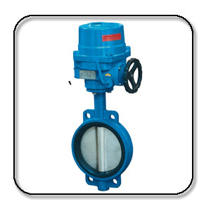 Wafer Type Electric Soft Sealed Butterfly Valve (D971X/J)