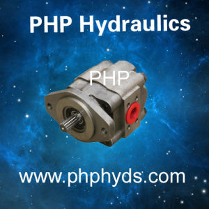 Hydraulic Gear Pump for Replacement Parker Commercial Gear Pump Pgp31, P3100 Metaris Permco pictures & photos