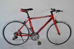 Fixed Bike (WT-FT1401) pictures & photos