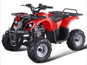 110CC ATV (GBTA28-110)