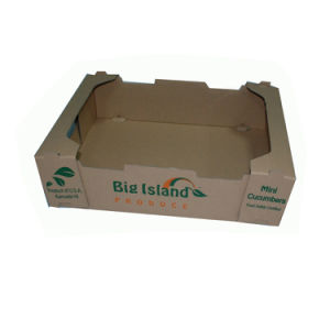 Customized Strong Quality Paper Tray Box for Fruit pictures & photos