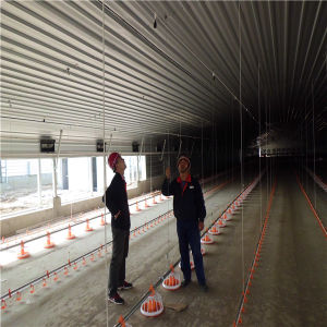 Qingdao Hapy One Stop Poultry Farm Construction pictures & photos