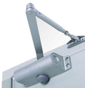 Controle De Acesso Access Control Hot Sell Door Closer with Aluminum Alloy (SDC-062) pictures & photos