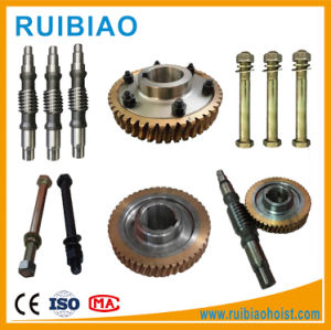 Worm and Wheel for Construction Hoist Reducer Gearbox pictures & photos