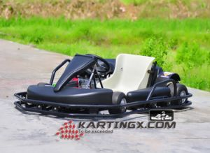 Cheap Hot Sale Adults Adult 1 Seat Pedal Go Kart/Karting pictures & photos