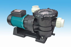 Big Factory Electric Swim Pool Water Pump, Circulate Pump for swimming Pool, Hotsale and Durable Pump for Swim Pool pictures & photos