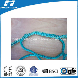 High Density Polyester/Polypropylene Netting pictures & photos