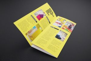 Custom Business Leaflets Printing Services pictures & photos