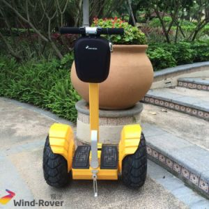 Wind Rover Outdoor Green Electric Vehicle Power Scooter pictures & photos