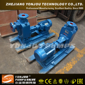 Yonjou Irrigation Pump pictures & photos