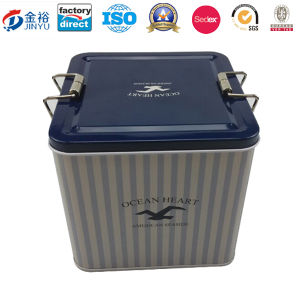 Gift Tin Metal Packaging Box with Lock pictures & photos