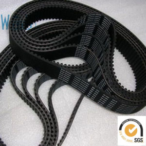 Equipment Driving Belt (XL) pictures & photos