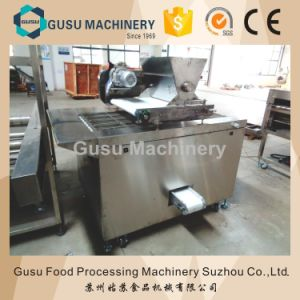 Ce Certified High Quality Nuts Sprinkling Machine for Chocolate Production Lines pictures & photos