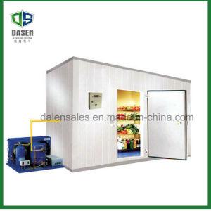 Meat Freezer Storage Room (DCM-150) pictures & photos