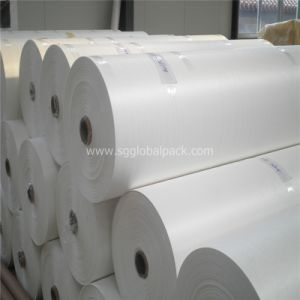 White Polyprolylene Woven Fabric for Sack pictures & photos