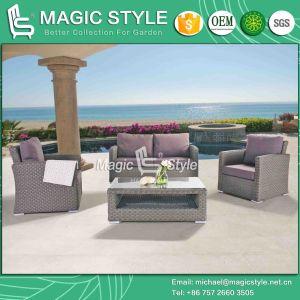 Hight Quality Sofa Set New Design Combination Sofa Set Garden Patio 2-Seat Sofa (MAGIC STYLE) pictures & photos