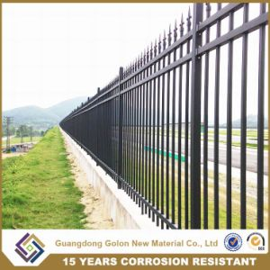 Spear Top Ornamental House Fence Designs pictures & photos
