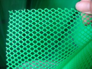 Green Plastic Flat Wire Mesh in 1.5cm to 3.0cm Hole pictures & photos