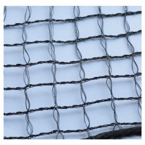 100% Virgin HDPE Anti-Bird Netting/Knotless Netting pictures & photos