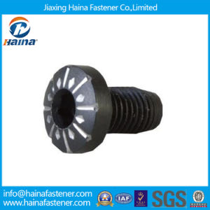 Non-Standard Black Machine Screw as Drawing/ Requirements pictures & photos
