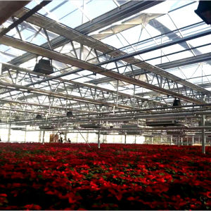The Newest Multi Span Glass Greenhouse for Sale pictures & photos